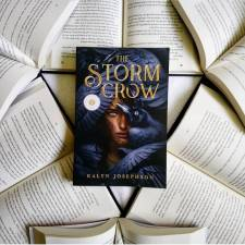 Q: Would you fly atop a giant magical crow if you could? The answer is YES. But since that isn't possible at the moment you can read all about what it would feel like in The Storm Crow by @kalynmjosephson! A new review for this book is up on my blog today so definitely go check it out! I absolutely loved it and I cannot wait for the sequel! I even made a little fanart to go along with it 😉 that is also up on the blog. I have big plans for the sketch I made! #TheStormCrow #KalynJosephson #bookstagram #yabooks #books #reader #bookishcanadians #fantasy #youngadultbooks #newbooks #firereads #sourcebooksfire #igbooks #bookstagramer #yafantasy #igreads