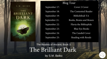 The Brilliant Dark-2